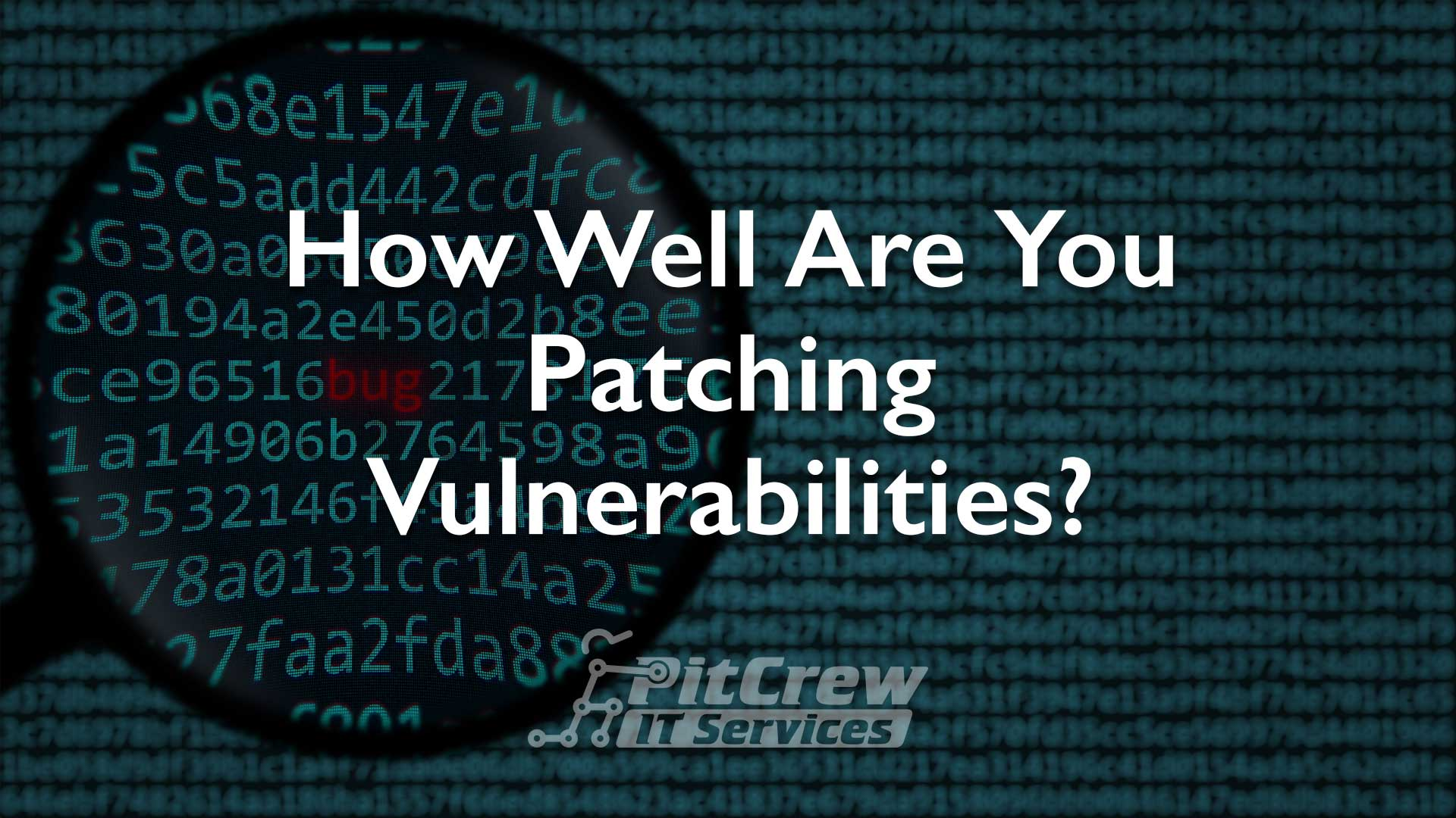 How Well Are You Patching Vulnerabilities